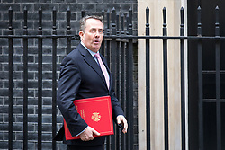 © Licensed to London News Pictures. 29/01/2018. London, UK. International Trade Secretary Liam Fox arriving in Downing Street to attend a Brexit meeting this morning. Photo credit : Tom Nicholson/LNP