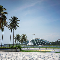 Palm threes and concourse opposite the Gardens by the Bay in Singapore