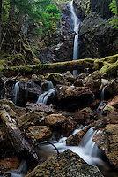 Cedar Hollow Falls is located about 1/3 of a mile along the Ross Dam trail near Diablo, Washington.