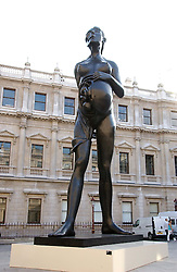 A Damian Hirst sculpture at The Royal Academy dinner before the official opening of the Summer Exhibition held at the Royal Academy of Art, Burlington House, Piccadilly, London W1 on 6th June 2006.<br /><br />NON EXCLUSIVE - WORLD RIGHTS