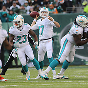 Miami Dolphins quarterback Ryan Tannehill in action during the New York Jets Vs Miami Dolphins  NFL American Football game at MetLife Stadium, East Rutherford, NJ, USA. 1st December 2013. Photo Tim Clayton