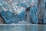 Terminus of the Dawes Glacier calving, Endicott Arm, Alaska.