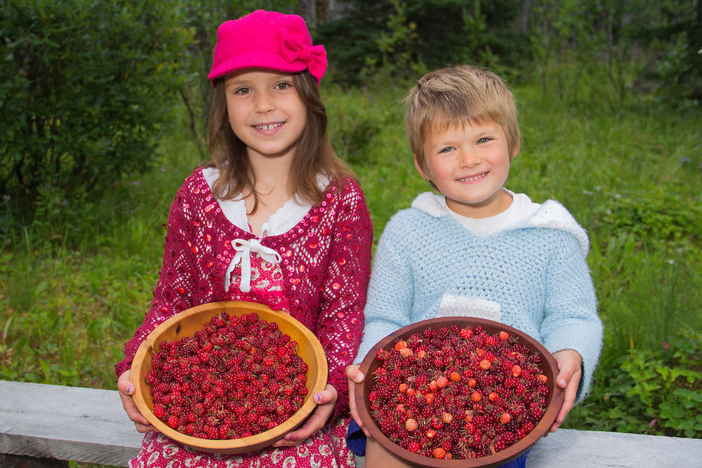A smiling boy and girl show off their colorful collection fo nagoonberries and strawberries in Gustavus, Alaska. MR