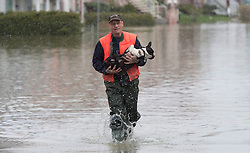 Andre Belanger carries his dog Rocky through floodwaters, Monday, May 8, 2017 in Gatineau, Quebec, Canada. Photo by Adrian Wyld /The Canadian Press/ABACAPRESS.COM