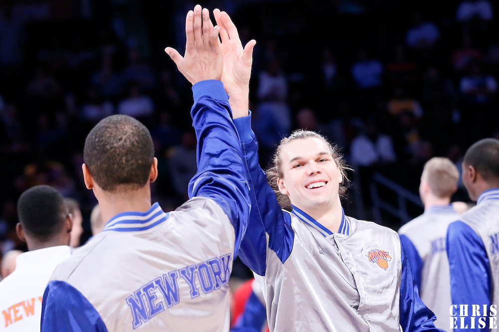 12 March 2015: New York Knicks forward Lou Amundson (21) is seen during the players introduction prior to the New York Knicks 101-94 victory over the Los Angeles Lakers, at the Staples Center, Los Angeles, California, USA.