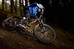 Mountain Biker on Forest Trail