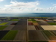 Nederland, Flevoland, Noordoostpolder, 16-04-2012; IJzertocht, met bloembollenvelden die op het punt van bloeien staan. Boerderijen en kavels op regelmatige onderlingen afstand, voorbeeld van moderne grootschalige polder met rationele verkaveling. De aanleg van de polder maakte deel uit van de Zuiderzeewerken (plan Lely) en viel in 1942 droog. De meeste boerderijen (en dorpen) zijn van na de tweede wereldoorlog. The northeast polder (NOP), is an example of modern large-scale polder with rational allotment. The construction of the polder was part of the Zuiderzee Works (Lely plan), in 1942 the polder was dry. Most of the building, farmhouses and villages, is post-war...QQQ.luchtfoto (toeslag), aerial photo (additional fee required).foto/photo Siebe Swart