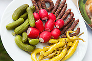 Appetizer, plate with pickles, radishes and sausage, closeup