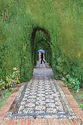 Alhambra garden, Granada, Andalusia, Spain