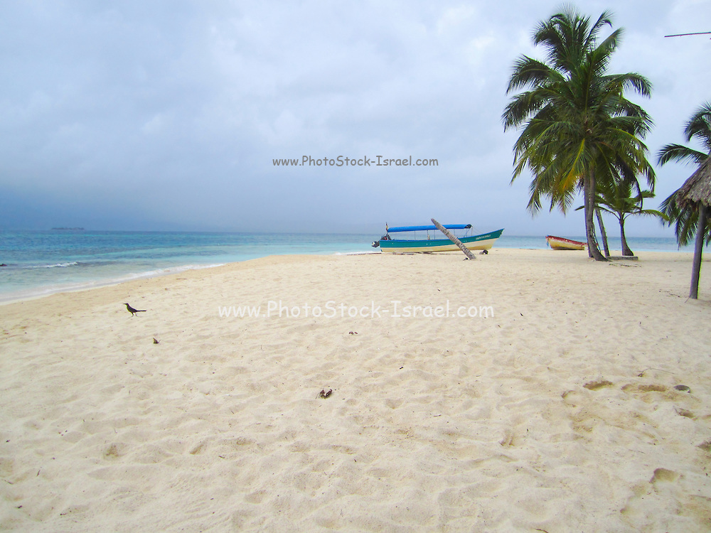 Panama, white sandy beach
