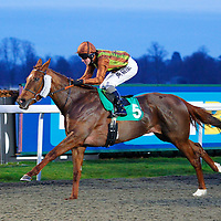 Iffranesia and Tom Queally winning the 5.25 race