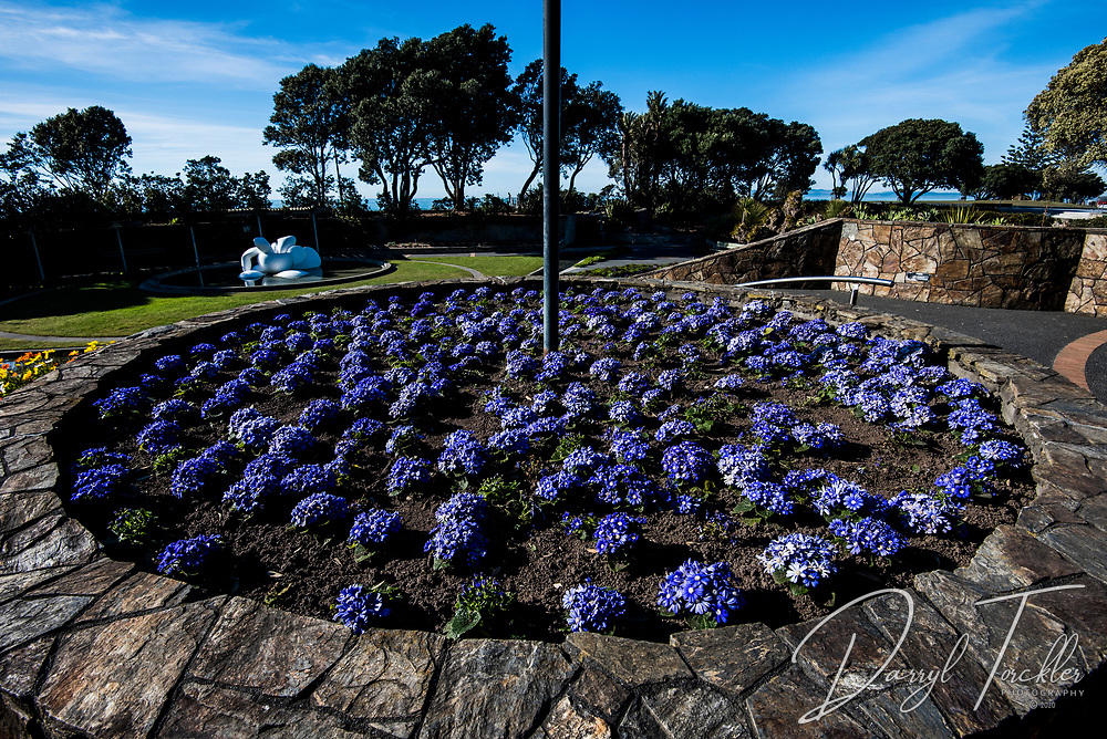 Marine Parade gardens in Napier. New Zealand