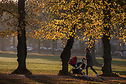 A mother pushes her child through an autumnal Ruskin Park in the south London borough of Lambeth.