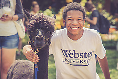 Petting Zoo on the Quad - Campus Activities
