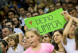 Supporters of Union Olimpija during basketball match between KK Union Olimpija and KK Rogaska in 4th Final game of Liga Nova KBM za prvaka 2016/17, on May 24, 2017 in Hala Tivoli, Ljubljana, Slovenia. Photo by Vid Ponikvar / Sportida