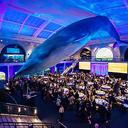 PA Peabody Museum Event NYC