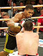 Picture by Alan Stanford/Focus Images Ltd +44 7915 056117<br /> 14/11/2013<br /> Anthony Joshua throws an overhand right to Hrvoje Kisicek  during their heavyweight contest at York Hall, Bethnal Green.