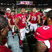 XXXXX during an NFL regular season game against the Cincinnati Bengals and the Arizona Cardinals on Sunday, Nov. 22, 2015 in Glendale, Ariz. The Cardinals won, 34-31. (Ric Tapia via AP)