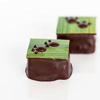 Canadian Intercollegiate Chocolate Competition April 13- 14, 2013