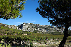 Fifteen miles long and as much as 1270 feet high, the Les Alpilles mountain chain runs between the Durance and Rhone rivers in Provence, southern France.  This view is from the D5, immediately south of Glanum, en route to Les Baux.
