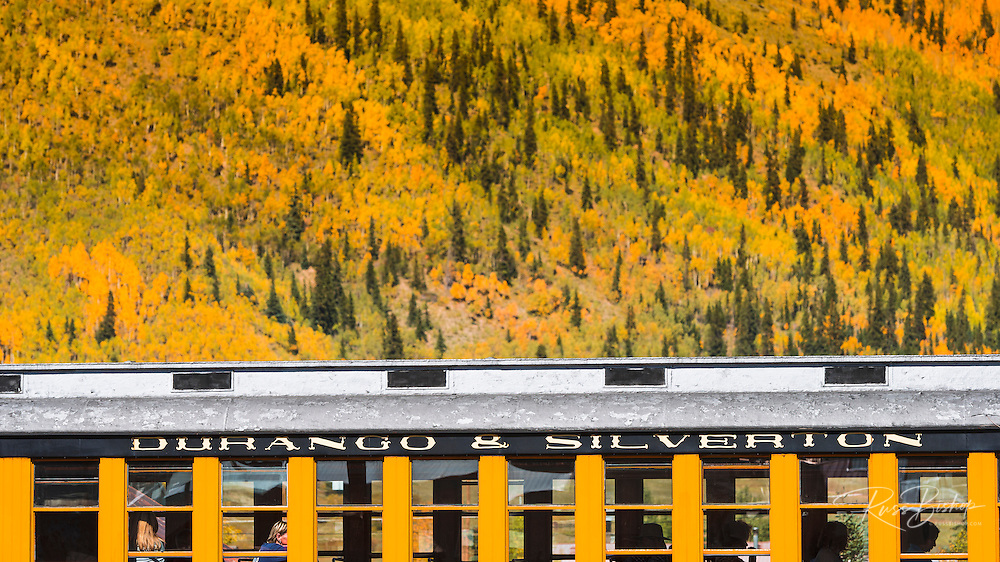 The Durango & Silverton Narrow Gauge Railroad and fall color, Silverton, Colorado USA
