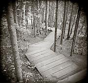 PL07812-00...Minnesota - Holga image of stair way on the Superior Hiking Trail.