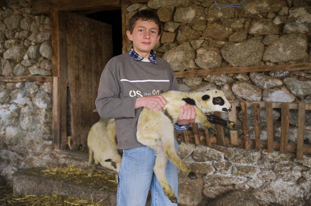 Ilija Traikovski (15) at his grandmother's barn in Dolno Dupeni, FYR  Macedonia