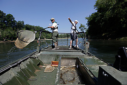 Seasonal Fisheries Technician Steven Kull, left, Fisheries Technician David Baker, and Research Biologist Dave Dreves electrofish, Tuesday, July 07, 2009 at Cumberland River in Jamestown. <br /> <br /> The team was conducting a survey of the fish population and the effects of the ongoing construction of Wolf Creek Dam as well as climate changes this year.