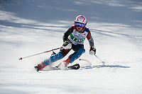 Piche Invitational Paul Ladouceur Championship slalom U12 boys  1st run.    ©2019 Karen Bobotas Photographer