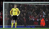Photo: Paul Thomas.<br /> Arsenal v Manchester United. The Barclays Premiership. 21/01/2007.<br /> <br /> Dejected Man Utd keeper Edwin van der Sar.