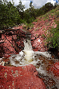 Creeks flow along the Arizona Trail in Gardner Canyon in the Santa Rita Mountains of the Coronado National Forest in the Sonoran Desert north of Sonoita, Arizona, USA.