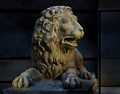 2017-08-27 Talleyrand lion morning