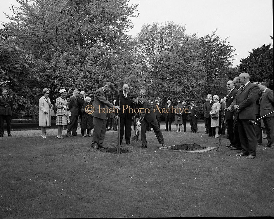 Belgian Royals King Baudouin and Queen Fabiola at Áras an Uachtarain..17.05.1968