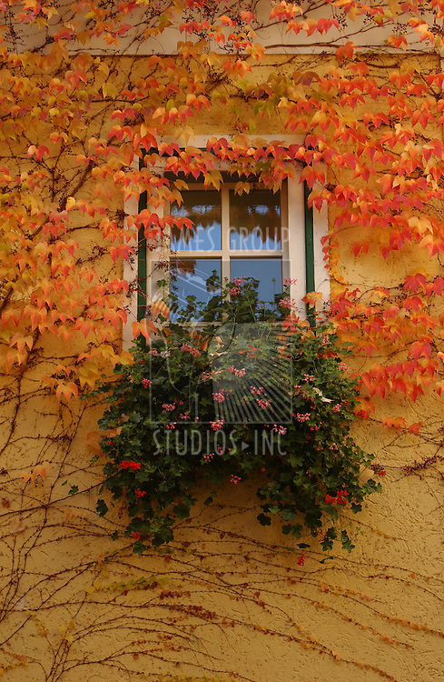 Bavarian window in autumn
