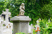 Serban Voda cemetery (commonly known as Bellu cemetery) is the largest and most famous cemetery in Bucharest, Romania.