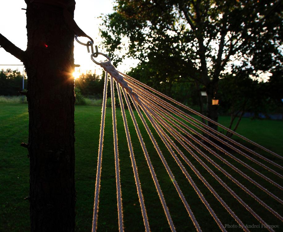 Hammock strings at sunset.