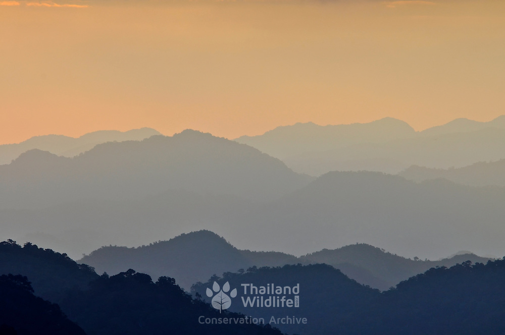 View of the rolling mountain peaks of Khaeng Krachan National Park at daw. Khaeng Krachan is Thailand.'s largest National Park.