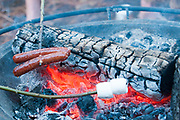 Hot dogs and marshmellows over a campfire.