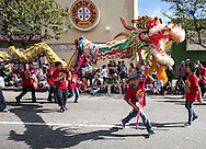 "Young dragon dancers perform during the 114th annual Chinese New Year ""Golden Dragon Parade"" in the streets of Chinatown in Los Angeles, Saturday Feburary 16, 2013. (Photo by Ringo Chiu/PHOTOFORMULA.com)."