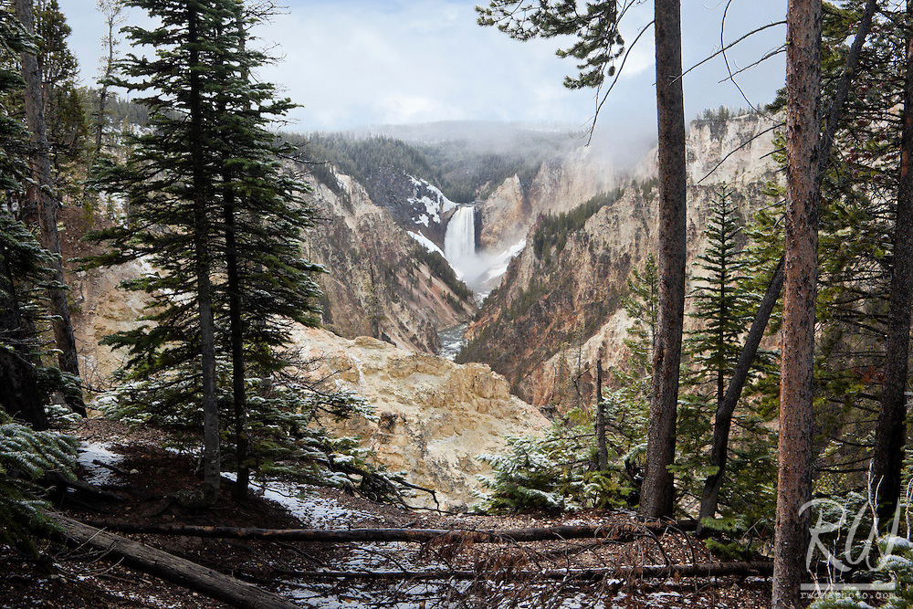 Grand Canyon of the Yellowstone Scenic View from Artist Point with Lower Yellowstone Falls in Distance, Yellowstone National Park, Wyoming