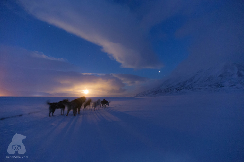 Dog Sledding On A Full Moon, Svalbard