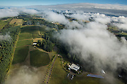 Aerial views over Lemelson Vineyards, Yamhill-Carlton AVA, Willamette Valley, Oregon