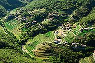 France, Languedoc Roussillon, Gard, Cevennes, vallée de Taleyrac, culture d'oignons doux des Cévennes, vue aérienne