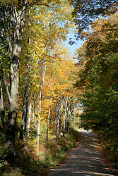 Early fall color graces a narrow country lane, Weathersfield, Vermont