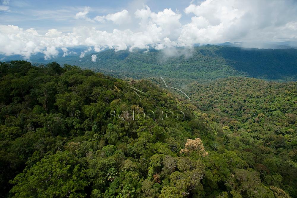 Eastern Ridge, Maliau Basin, Sabah, Borneo, East Malaysia.