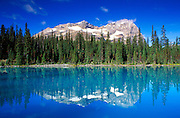 Morning light on Mount Odaray reflected in Lake O'Hara, Yoho National Park, British Columbia, Canada