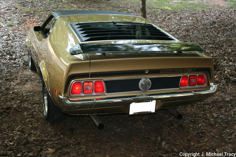 Back view of a gold and black, gorgeous, 1973 Ford Mustang Mach 1.