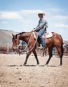B Bar B Horses