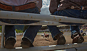 Cowboys watch the steer tie down competition in Falkland, BC (2012)