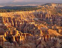 Morning view of Bryce Canyon hoodoos from canyon rim, Bryce Canyon National Park Utah USA